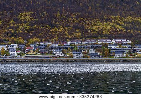 Norwegian Town Near A Fjord With A Forest Behind