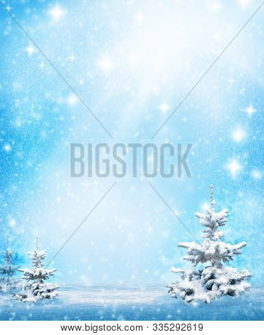 Winter Landscape With Snowy Winter Trees And White Snowdrifts . Winter Background, Winter Sunny Scen