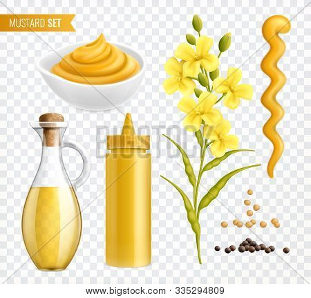Mustard Realistic Set Of Isolated Images On Transparent Background With Plants Seeds And Jars With T