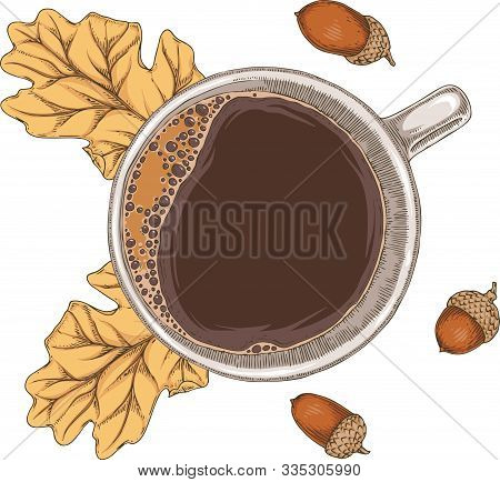 White Cup Of Hot Coffee, Acorn And Brown Dried Oak Leaf. Top View. Isolated On A White Background