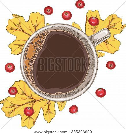 White Cup Of Hot Coffee, Cranberries And Yellow Dried Oak Leaf. Top View. Isolated On A White Backgr