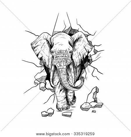Furious Elephant, Crushing The Wall, Going Through