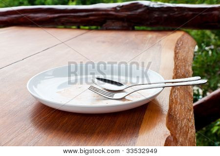 Empty Dish After Food