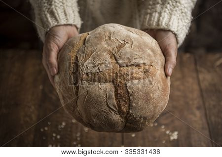 Bread, woman hands holding freshly baked sourdough bread on rustic background. Horizontal with copyspace poster