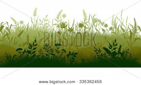 Grass Silhouette. Marsh And Swamp Plains With Weed And Plants, Cartoon Wavy Meadow. Vector Grassland