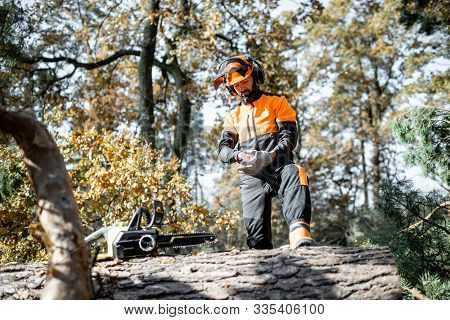 Professional lumberman wearing protective workwear while preparing for logging work in the pine forest poster