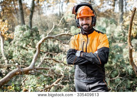 Waist-up portrait of a professional lumberman in harhat and protective workwear standing in the pine forest poster