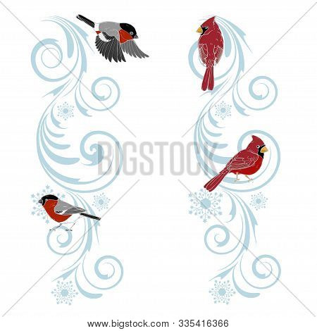 Christmas Ornament And Birds Cardinals And Bullfinches, Christmas Design Template, Vector Illustrati