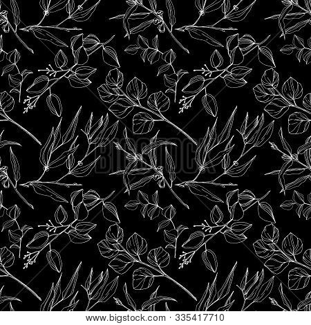 Vector Eucalyptus Tree Leaves Jungle Botanical. Black And White Engraved Ink Art. Seamless Backgroun