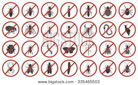 Bug Of Insect Vector Black Set Icon.vector Illustration Insect Beetle. Isolated Black Icon Bug And F