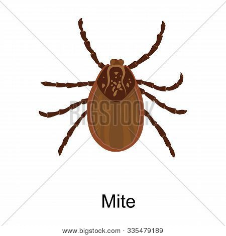 Mite Vector Icon.cartoon Vector Icon Isolated On White Background Mite.
