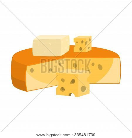 Fresh Gouda Cheese Head And Pieces Vector Illustration