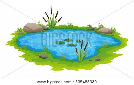 Natural Pond Outdoor Scene. Small Blue Decorative Pond Isolated On White, Lake Plants Nature Landsca