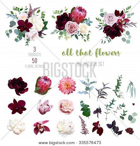 Dusty Pink And Creamy Rose, Coral Dahlia, Burgundy And White Peony Flowers, Cymbidium Orchid, Pink C