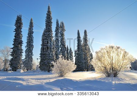 Finland. Beautiful Sunny Winter Day In Mikkeli Park