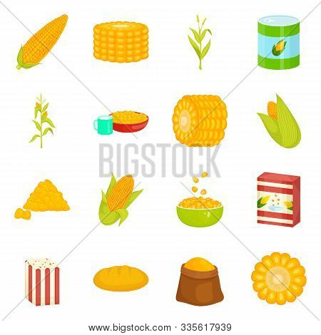 Vector Illustration Of Maize And Food Logo. Collection Of Maize And Crop Vector Icon For Stock.