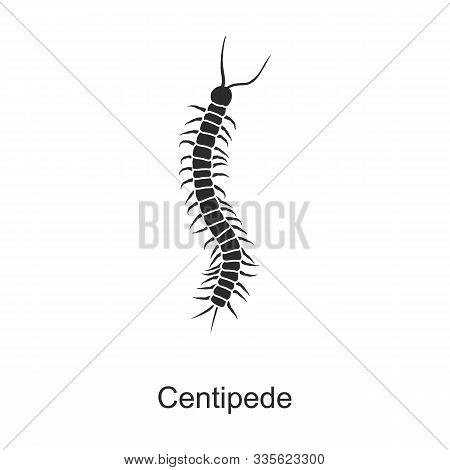 Insect Centipede Vector Icon.black Vector Icon Isolated On White Background Insect Centipede.
