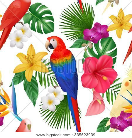 Tropical Pattern. Exotic Flowers And Birds Colored Beautiful Amazonian Parrots Vector Floral Seamles