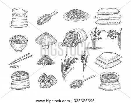 Rice Sacks. Natural Agriculture Objects Wheat Grains Rice Food Vector Hand Drawn Collection. Illustr