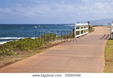 Walking Trail In Kapaa