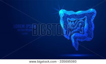 Gastrointestinal Tract Geometric Lines, Low Poly Style Wireframe Vector Banner Template. Isolated Me