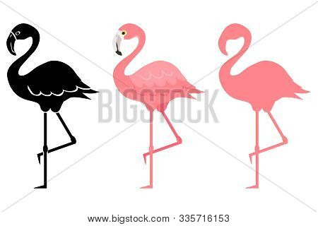 Flamingo, Pink Flamingo Silhouette. Cartoon Illustration Of A Flamingo. Vector Illustration.