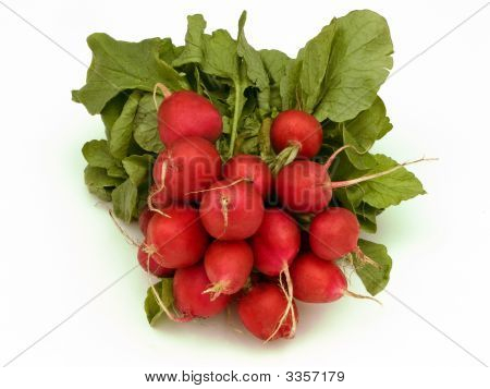 Bunch Of Radish
