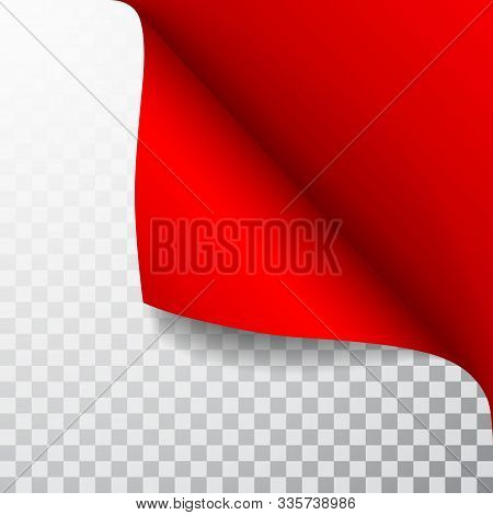 Paper Page With Curled Corner And Shadow. Template For Your Design. Set. Vector Illustration.