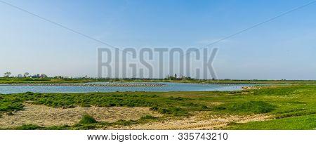 The Schakerloopolder In Tholen City With Rural Buildings In The Distance, Nature Scenery Of Zeeland,
