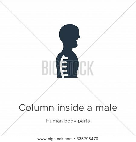 Column Inside A Male Human Body In Side View Icon Vector. Trendy Flat Column Inside A Male Human Bod