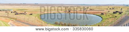 Alzu, South Africa - May 22, 2019: The View At Alzu Petruport Next To Road N4 Between Belfast And Mi