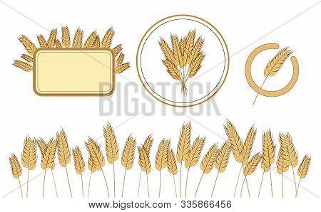 Bread Wheat Logo And Design Elements. Wholegrain Organic Harvest. Vector Illustration Wholemeal