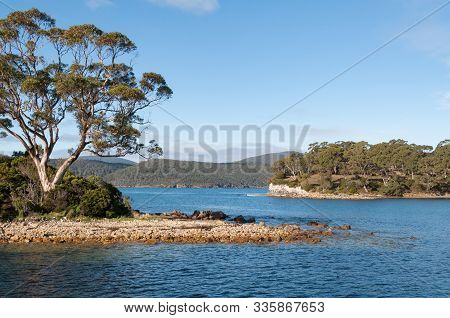 Australian Landscape With Eucalyptus Tree On An Island And Tree Covered Hills In The Distance. Histo