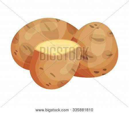 Raw Unpeeled Potato For Gnocchi Preparation Vector Illustration