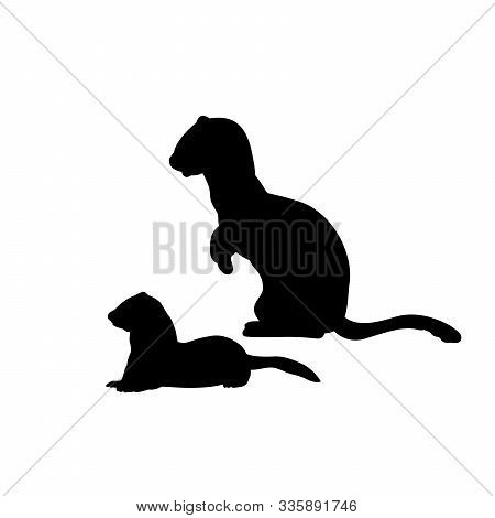 Silhouette Of Weasel Ferret With Cub Weasels Ferret. An Animal Of The Marten Family. Vector Illustra