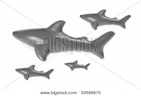Toy Sharks