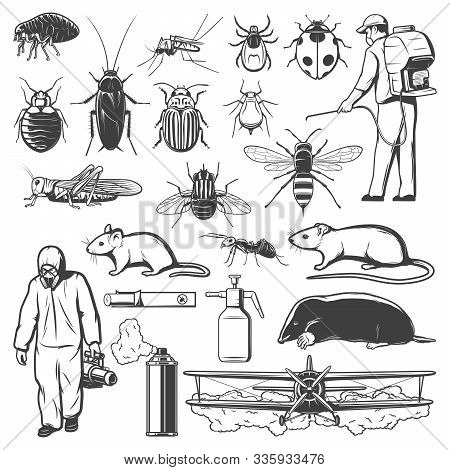 Pest Control Sketches With Insects, Insecticide, Rodent And Exterminators. Mosquito, Cockroach, Ant