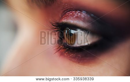 Shiny Glitter Pigments In Eyes Makeup. Luxury Eye Makeup Concept. Purple Smokey Eyes Makeup Close Up