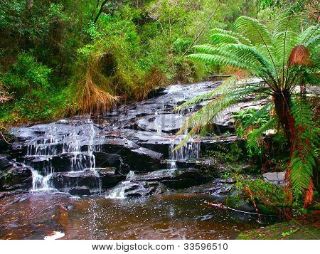Great Otway National Park Waterfall