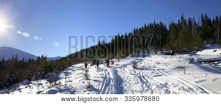 Freeriders With Skis Go On Footpath In Snow At Sun Winter Day. Carpathian Mountains, Ukraine. Panora