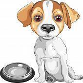 color sketch of the dog Jack Russell Terrier breed sits in front of an empty bowl asks to eat poster