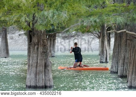 A Man On A Rowing Board Between The Thick Trunks Of Swamp Cypress Trees. He Takes Pictures With His