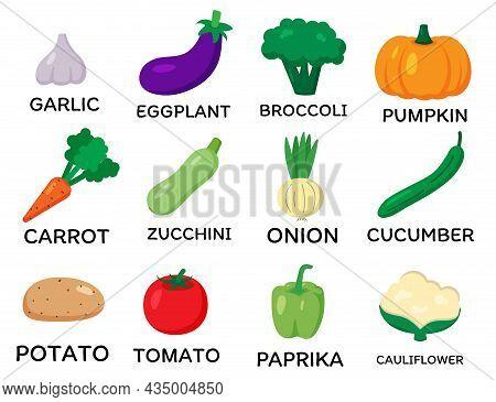 Set Of Vector Vegetables. Cartoon Flat Style. Garlic, Eggplant, Broccoli, Pumpkin, Carrot, Zucchini,