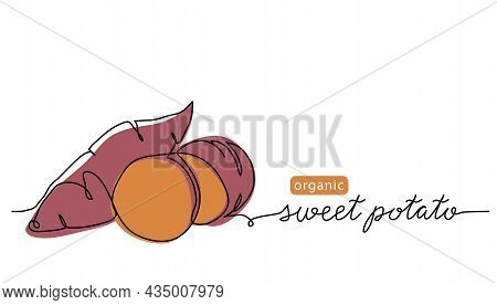 Sweet Potato Tuber Vector Illustration. One Line Art Drawing With Lettering Organic Sweet Potato