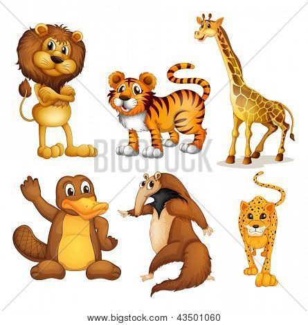 Illustration of the different kinds of land animals on a white background