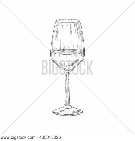 Hand Drawn Grape Wine Glass, Vintage Engraving Vector Illustration Isolated.
