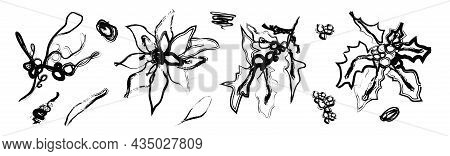 One Line Of The Pattern Of Winter Flowers, Leaf, Dots. Modern Art, The Line Of Botanical Flowers (po