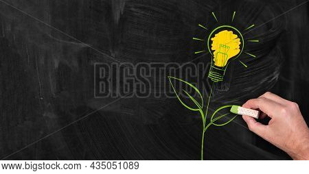 Green Energy Concept, Person Drawing Green Plant With Light Bulb On Blackboard