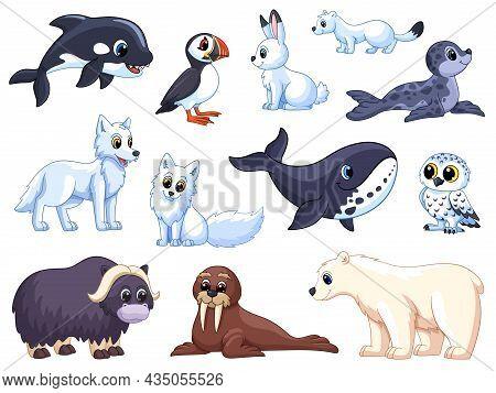 Arctic Animals. Cartoon Polar Wolf, Animal Tundra. White Bear And Fox, Cute Cold Seal. Winter Isolat