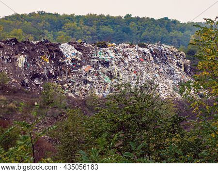 Garbage In The Forest. Environmental Pollution. Problems Of Nature And The Environment. Illegal Garb